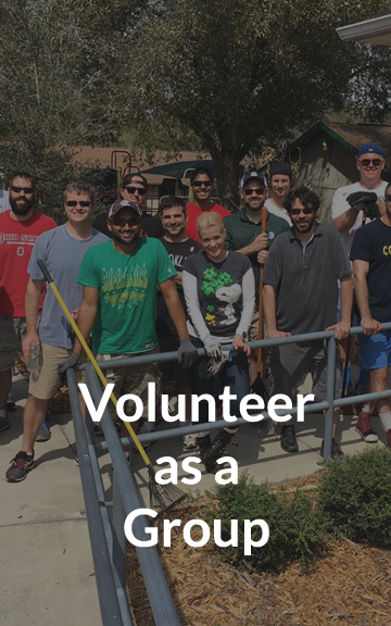 Volunteer as a Team Button